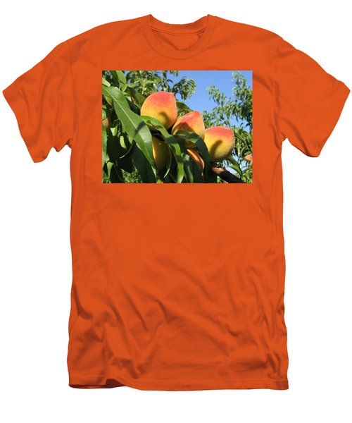 Peaches Men's T-Shirt (Slim Fit) by Barbara Yearty