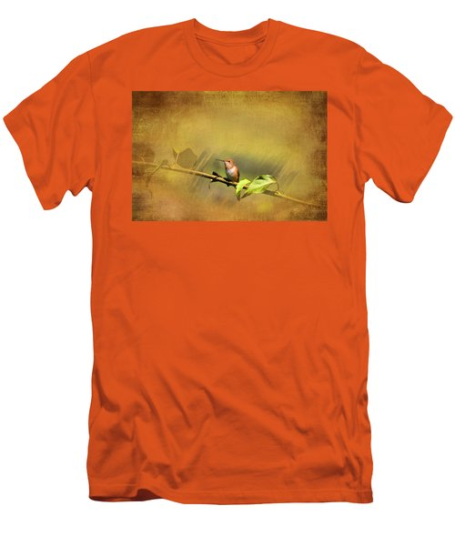 Plate 112 - Hummingbird Grunge Series Men's T-Shirt (Athletic Fit)