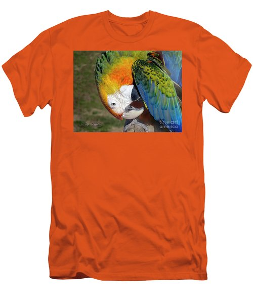 Preening Macaw Men's T-Shirt (Slim Fit) by Melissa Messick