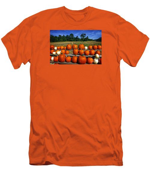 Pumpkins In A Row Men's T-Shirt (Slim Fit) by Dee Flouton