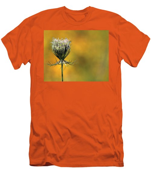 Queen Anne's Lace Stony Brook New York Men's T-Shirt (Slim Fit) by Bob Savage