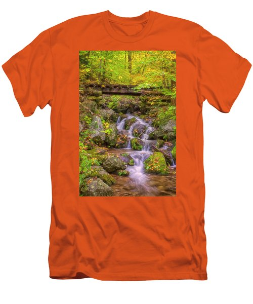 Railroad In The Woods Men's T-Shirt (Slim Fit) by David Cote