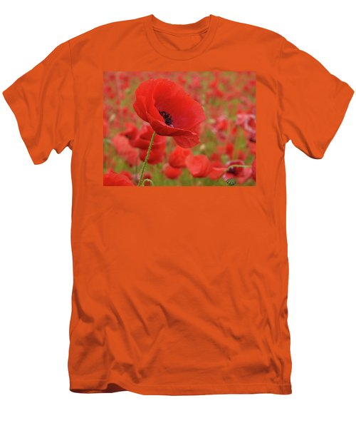 Red Poppies 3 Men's T-Shirt (Athletic Fit)