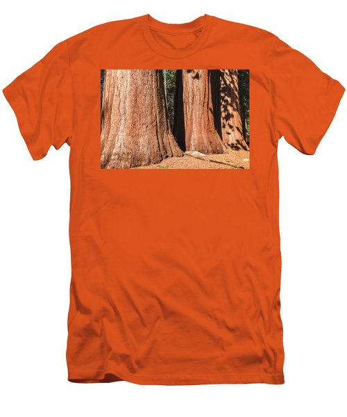 Sequoia Men's T-Shirt (Slim Fit) by Muhie Kanawati