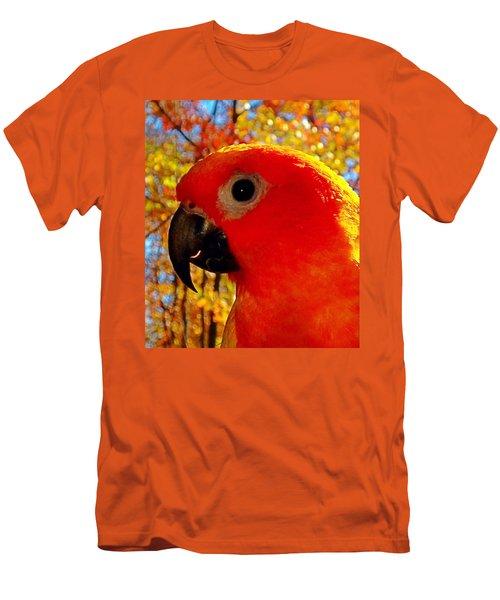Sun Conure  Men's T-Shirt (Athletic Fit)
