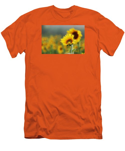 Sunflower Field Men's T-Shirt (Slim Fit) by Karen McKenzie McAdoo