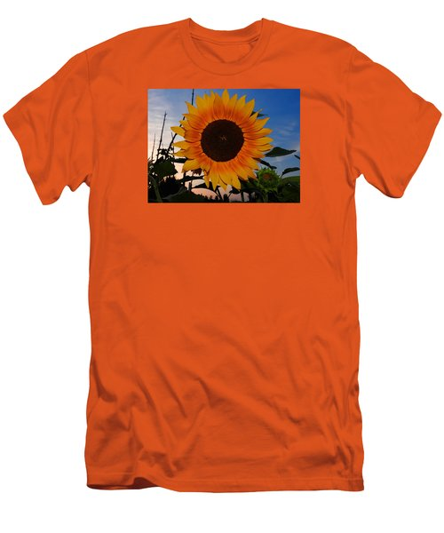 Sunflower In The Evening Men's T-Shirt (Slim Fit) by Ernst Dittmar