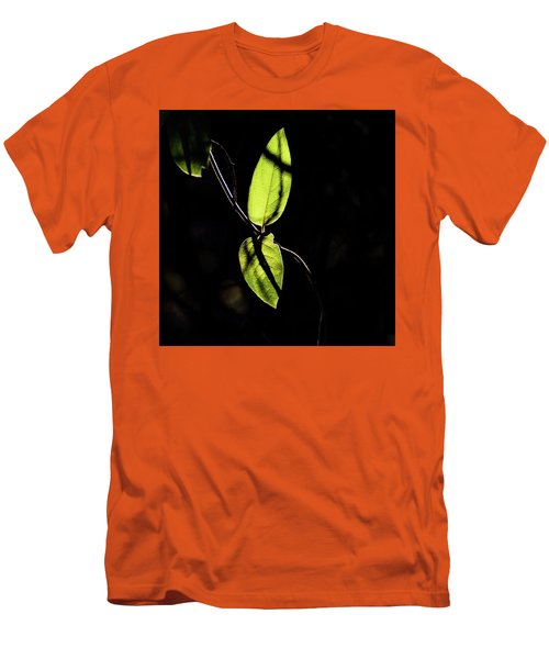 Sunlit Leaves Men's T-Shirt (Athletic Fit)