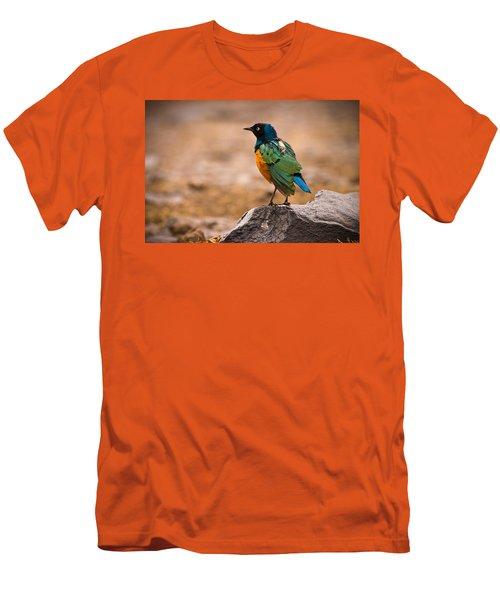 Superb Starling Men's T-Shirt (Slim Fit) by Adam Romanowicz
