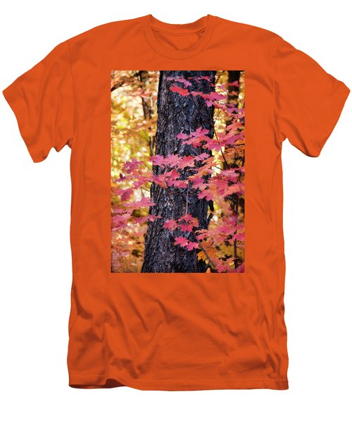 Men's T-Shirt (Athletic Fit) featuring the photograph The Beauty Of Fall Colors  by Saija Lehtonen