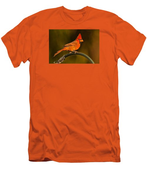 Men's T-Shirt (Slim Fit) featuring the photograph The Cardinal by Don Durfee