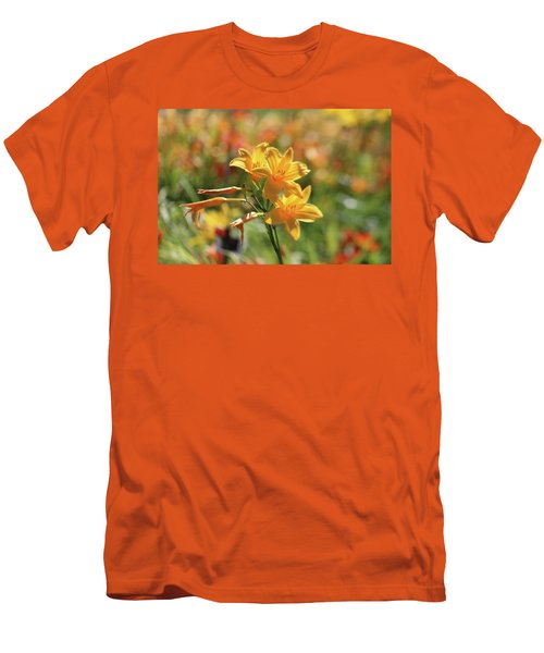 The Lilies Arrayed Men's T-Shirt (Athletic Fit)