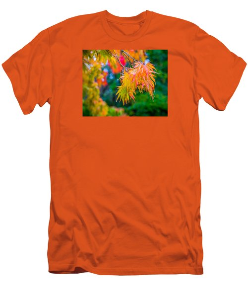The Rainy Bunch Men's T-Shirt (Slim Fit) by Ken Stanback