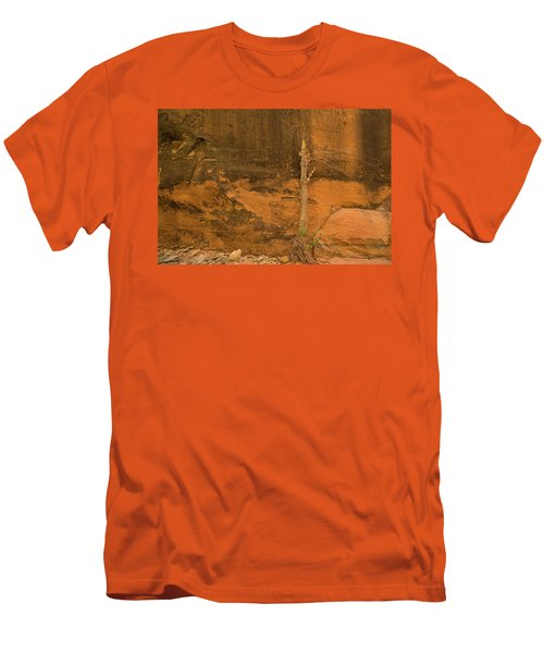 Tree And Sandstone Men's T-Shirt (Athletic Fit)