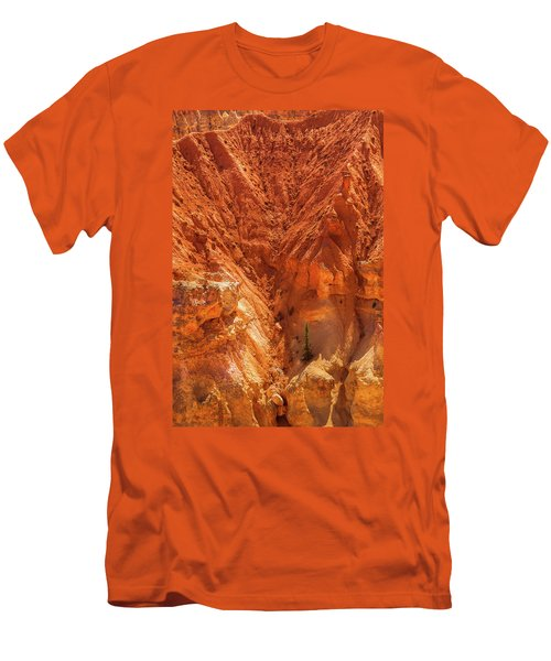 Tree In Bryce Men's T-Shirt (Athletic Fit)