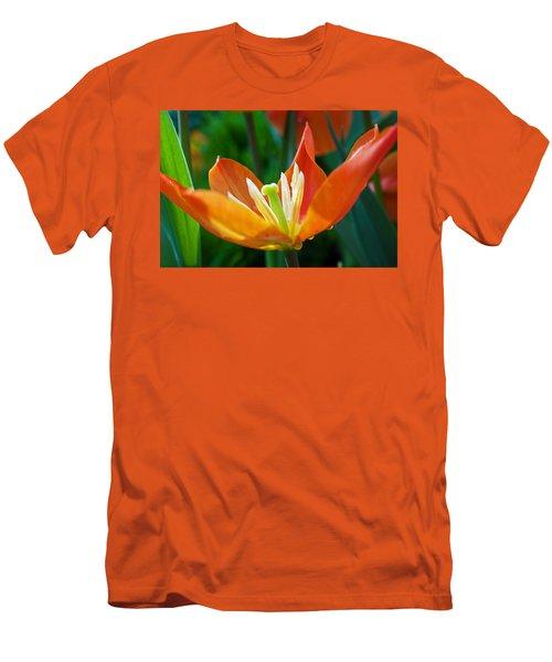 Tulip Time Men's T-Shirt (Athletic Fit)
