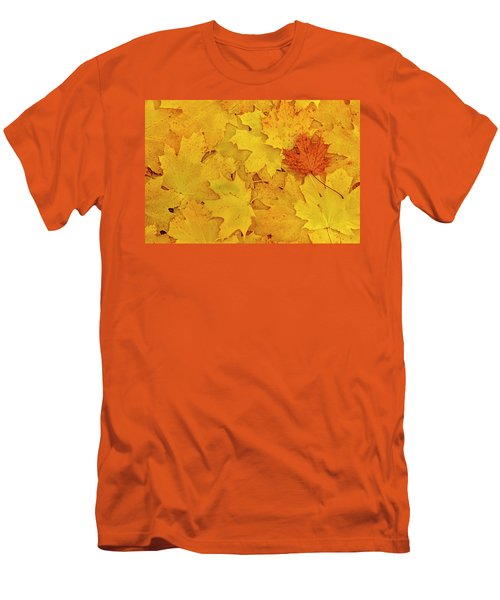 Men's T-Shirt (Slim Fit) featuring the photograph Understory by Tony Beck