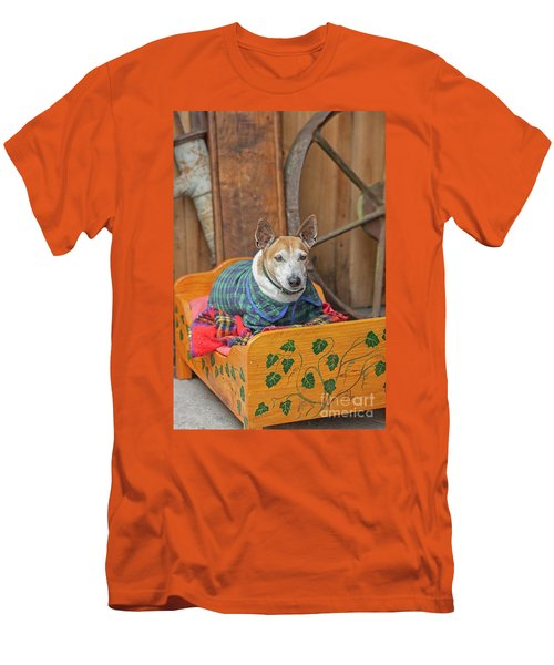 Men's T-Shirt (Slim Fit) featuring the photograph Very Old Pet Dog In Clothes On Own Bed by Patricia Hofmeester