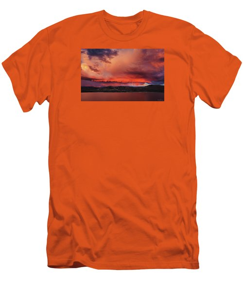 Visitation Men's T-Shirt (Slim Fit) by Rick Furmanek
