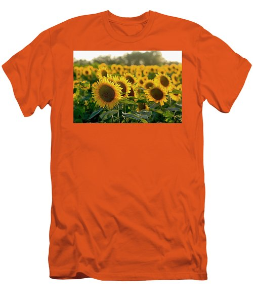 Waving Sunflowers In A Field Men's T-Shirt (Slim Fit) by Karen McKenzie McAdoo