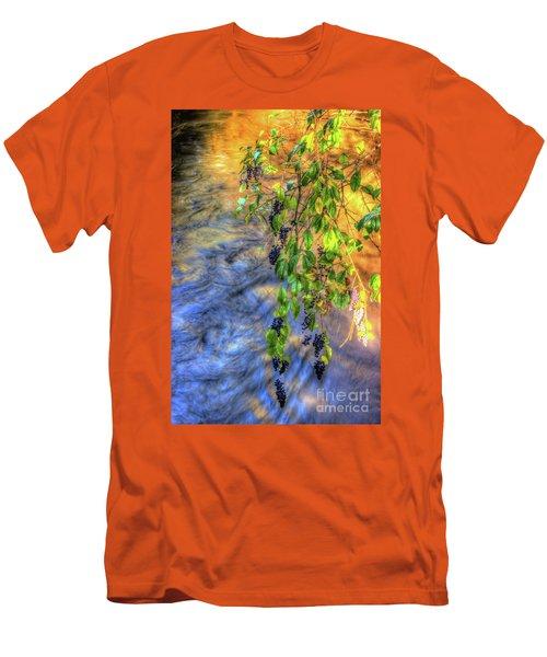 Wild Grapes Men's T-Shirt (Athletic Fit)