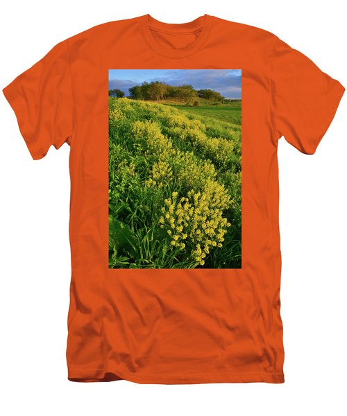 Wildflowers In Glacial Park Of Mccd Men's T-Shirt (Athletic Fit)