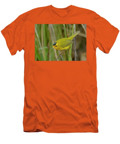Men's T-Shirt (Slim Fit) featuring the photograph Wilson's Warbler by Doug Herr