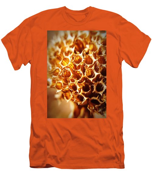 Winter Bee Balm Macro Men's T-Shirt (Athletic Fit)