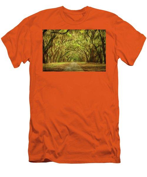 Wormsloe Plantation Oaks Men's T-Shirt (Slim Fit) by Priscilla Burgers