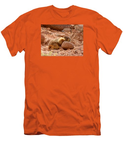 Yellow Bellied Marmot Capitol Reef Utah Men's T-Shirt (Slim Fit) by Deborah Moen