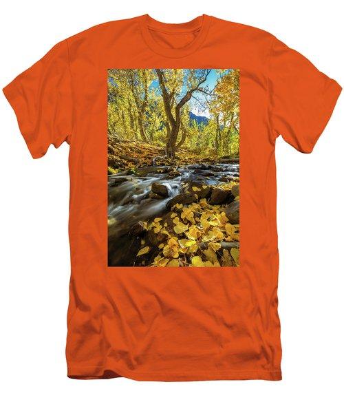 Yellow Men's T-Shirt (Slim Fit) by Tassanee Angiolillo