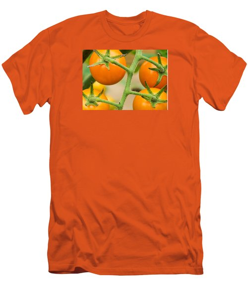 Men's T-Shirt (Slim Fit) featuring the photograph Yellow Tomatoes by Paul Miller