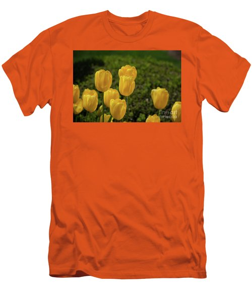 Yellow Tulips Men's T-Shirt (Athletic Fit)