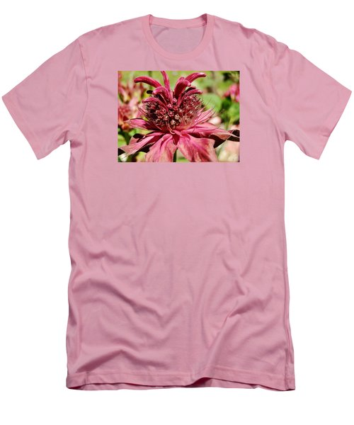 Bee Balm Details Men's T-Shirt (Slim Fit) by VLee Watson