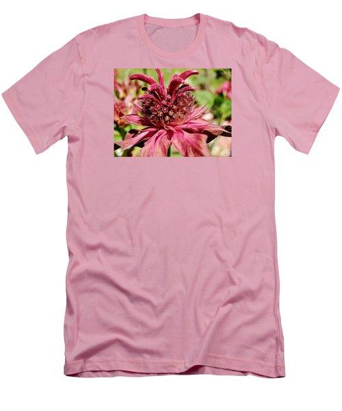 Bee Balm Details Men's T-Shirt (Athletic Fit)