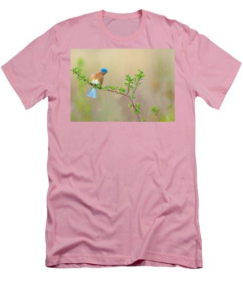 Bluebird Breeze Men's T-Shirt (Athletic Fit)