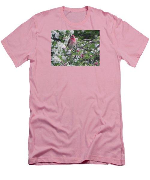 Finch In Apple Tree Men's T-Shirt (Slim Fit) by Christine Lathrop