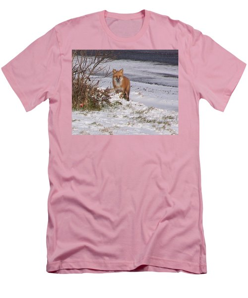 Fox In My Yard Men's T-Shirt (Athletic Fit)