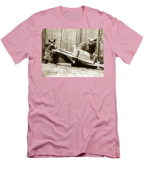 Men's T-Shirt (Slim Fit) featuring the photograph Fun With Cats Henry King Nourse Photographer Circa 1900 by California Views Mr Pat Hathaway Archives