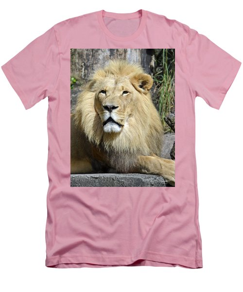 King Of Beasts Men's T-Shirt (Athletic Fit)