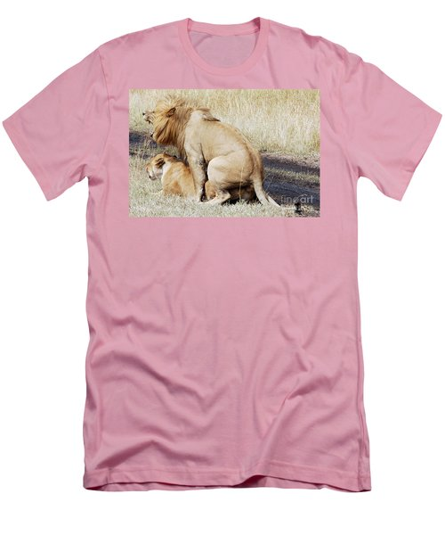 Lions Mating Men's T-Shirt (Athletic Fit)