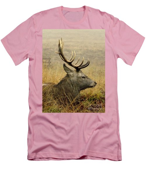 Resting Stag Men's T-Shirt (Athletic Fit)