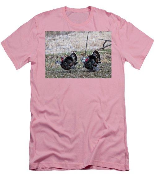 Strutting Turkeys Men's T-Shirt (Slim Fit)