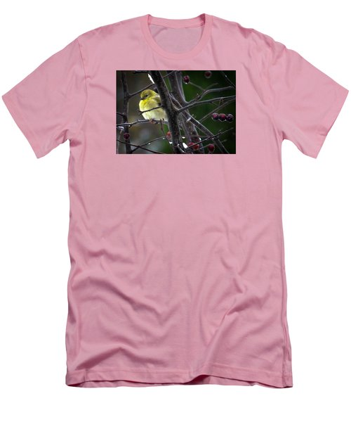 Yellow Finch Men's T-Shirt (Slim Fit) by Karen Wiles