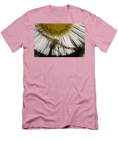 Flower Spider On Fleabane Men's T-Shirt (Slim Fit) by Daniel Reed