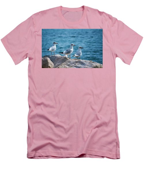Black-headed Gulls, Chroicocephalus Ridibundus Men's T-Shirt (Slim Fit) by Elenarts - Elena Duvernay photo