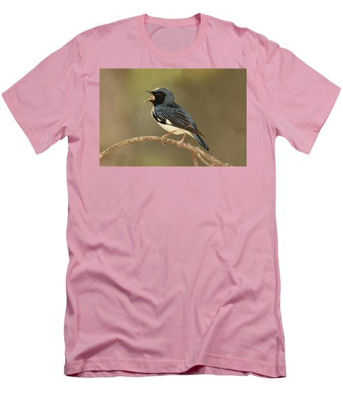 Black-throated Blue Warbler Men's T-Shirt (Athletic Fit)