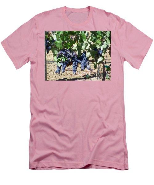 Grapevine Men's T-Shirt (Slim Fit) by Pamela Walrath