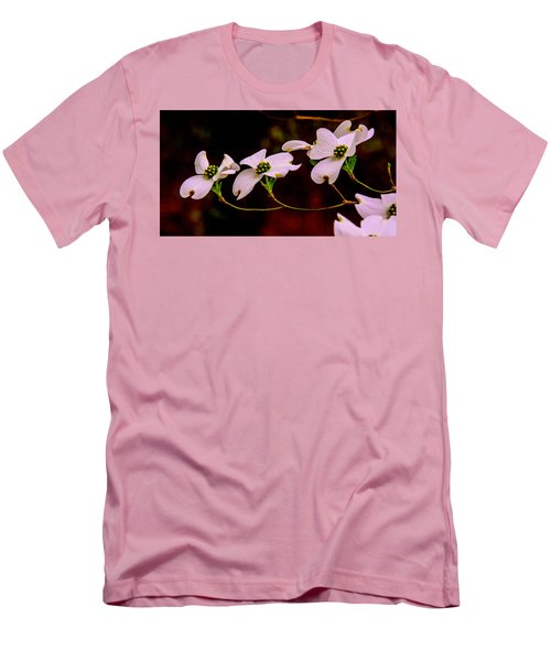 3 Dogwood Blooms On A Branch Men's T-Shirt (Slim Fit) by John Harding