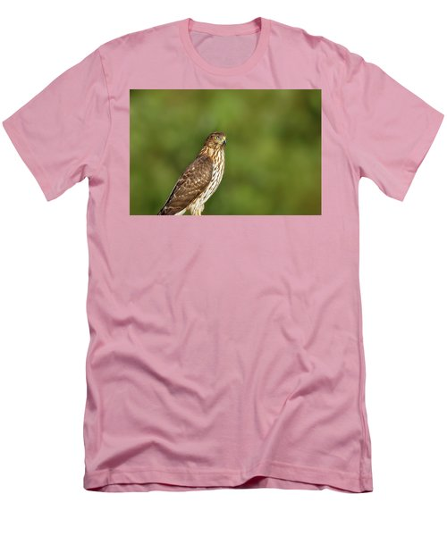 Men's T-Shirt (Athletic Fit) featuring the photograph Red-tailed Hawk by Peter Lakomy